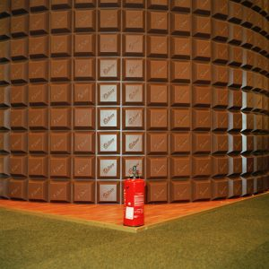 A chocolate wall and fire extingisher